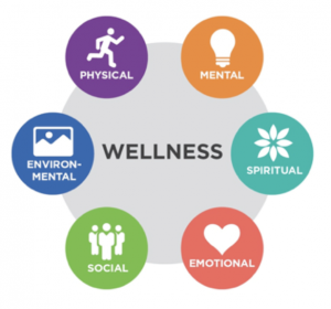 osteopath in Doha describes wellness